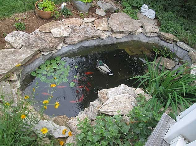 We Just Finished With A Small Pond Using Your Product. We Just Love The  Look. It Was A Great Way To Make That Transition From Water To Soil.
