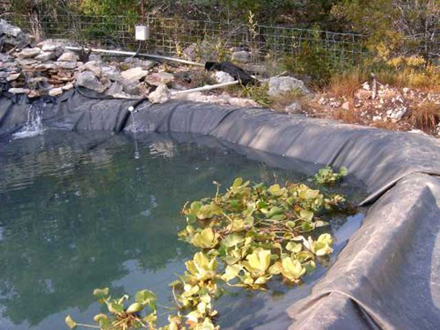 Exposed pond liner