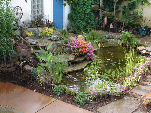 Raised Garden Pond Ideas : Raised Backyard Ponds Garden with pond plants