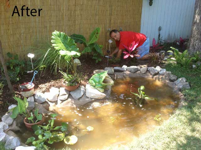 After - pond liner hidden